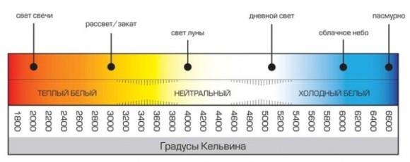 kelvin_-600x238